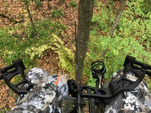 jonathan-in-tree-stand-bow-hunt-oct-2016